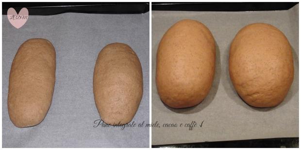 Prima e dopo la lievitazione